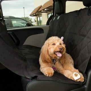 Protection de voiture pour chien